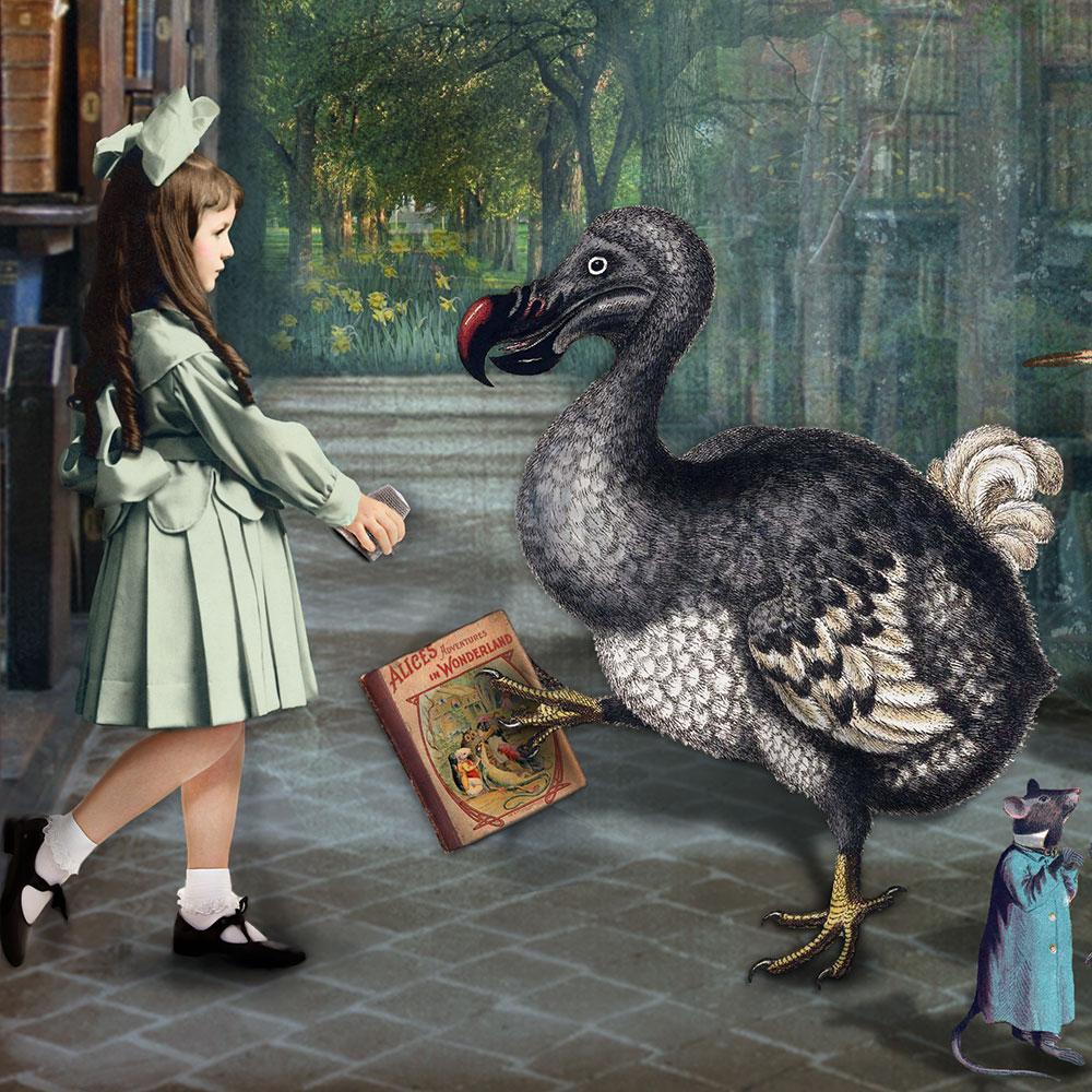 alice-dodo-print-close-sm.jpg