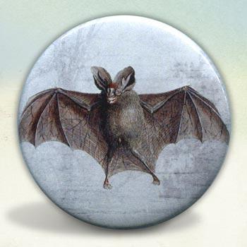 Bat Engraving