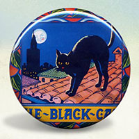 Black Cat Oranges Illustration Poster