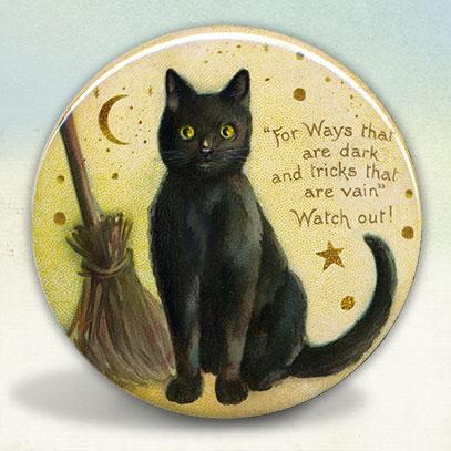 Little Black Kitty