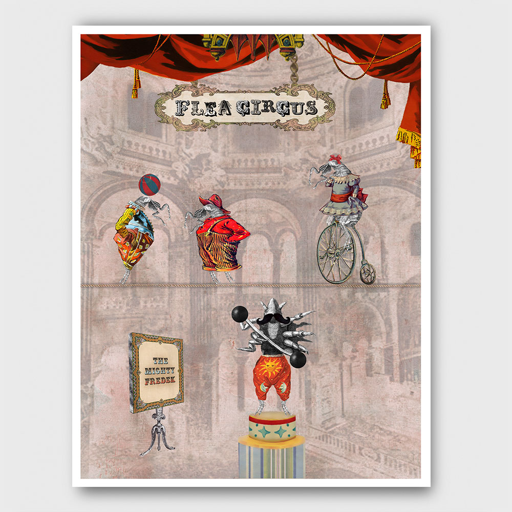 flea-circus-print-border-sm.jpg