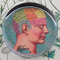 Phrenology Head Glass Round Paperweight