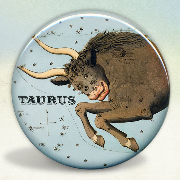 taurus-mirror-sm.jpg